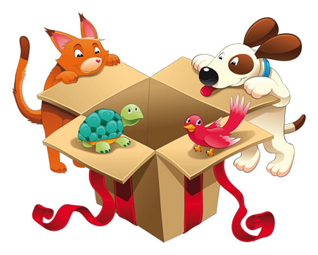 Buying Safer Pet Toys