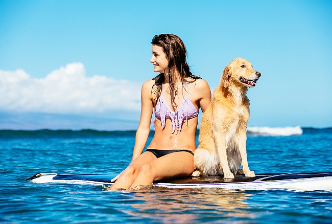 dog and woman on surf board