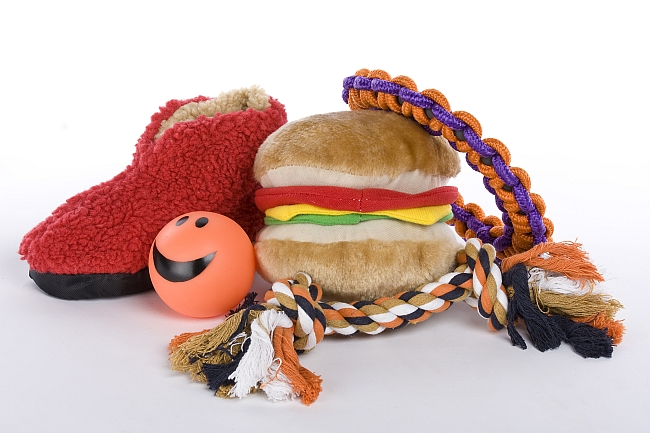 Types of Dog Toys
