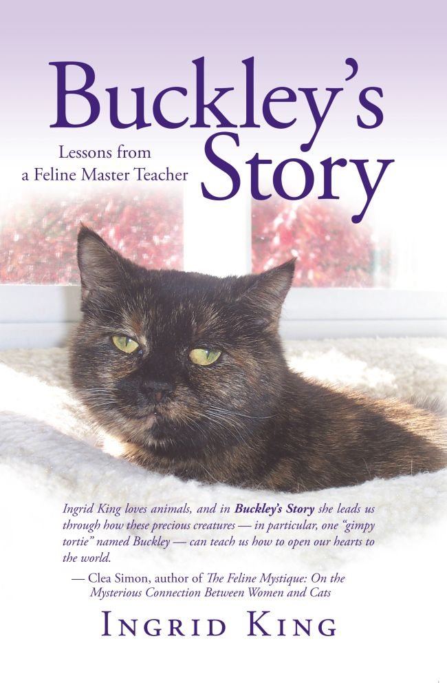Must-Reads for Cat Lovers
