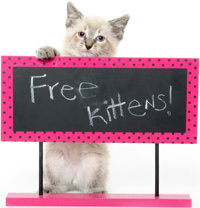 Giving Pets Away For Free?