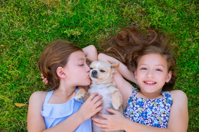 How Pets Aid Child Development