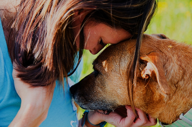 Communicating Safely and Effectively With Deaf Pets