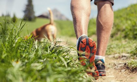 What To Watch Out For When Exercising Your Dog