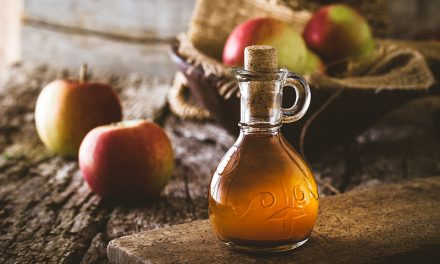 Pet Owner's Guide to Vinegar: 7 Benefits