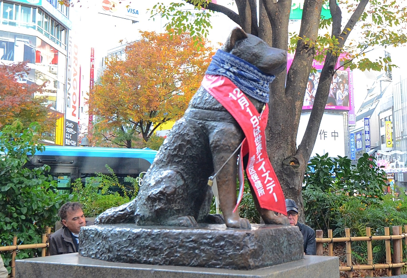 Hachiko statue at Shibuya train station